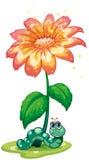 En daggmask under blomman Royaltyfria Bilder