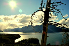 En dal i Bariloche Royaltyfria Bilder