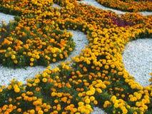 En dekorativ blomsterrabatt Royaltyfri Bild