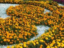 En dekorativ blomsterrabatt Royaltyfria Foton