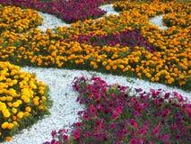En dekorativ blomsterrabatt Arkivfoto