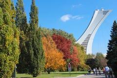 En del av olympisk stadion. Royaltyfria Foton