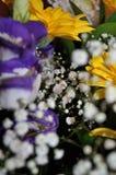 En delikat bukett av blommor Arkivfoton