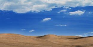 En desierto durante el período del calor Fotos de archivo libres de regalías