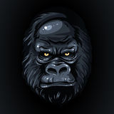 En dessinant le gorille réaliste de visage noir, jaunissez les yeux Photo stock