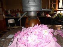 En destillationsapparat med blommor som används i destillation royaltyfri fotografi