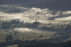 En dimmig morgon arkivbild