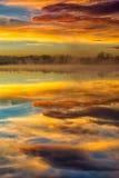 En dimmig reflexion Royaltyfria Bilder