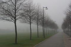 En dimmig roud med gatalampor och träd royaltyfria foton