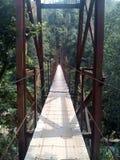 En dingla bro