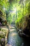 En djungelflod i bali, indonesia royaltyfri foto