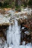 En djupfryst flod royaltyfri foto