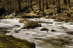En djupfryst sikt av lilla Stony Creek Royaltyfria Bilder