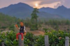 En docka som placerar på staketet Royaltyfri Foto
