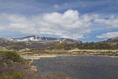 En Dovrefjell Foto de archivo
