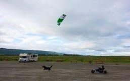 En drake som drar enbyggd barnvagn längs stranden på homeren alaska Fotografering för Bildbyråer