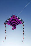 En drakefluga i himlen Royaltyfri Bild