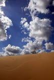 En dunas Imagen de archivo libre de regalías