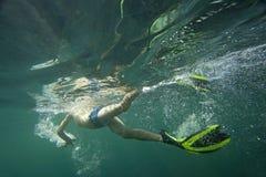 En dykare, i att snorkla för flipper Royaltyfri Foto