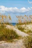 En dynbana till stranden. Royaltyfri Foto
