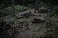 En dyster skogbana bland dolda stenblock för mossa arkivfoton