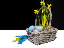En easter korg med kulöra ägg royaltyfri foto