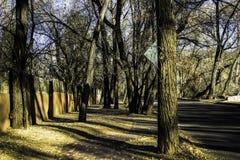 En eftermiddag i Santa Fe Royaltyfri Bild