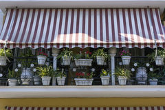 En el balcón con los potes blancos de un soporte rayado del toldo con el diffe Fotos de archivo