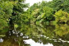 En el banco de un pequeño río Fotos de archivo libres de regalías
