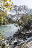 En el banco del río de la montaña Imagen de archivo