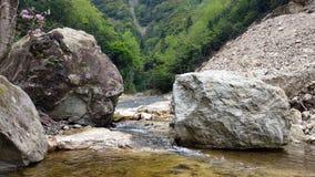 En el borde de The Creek fotos de archivo libres de regalías