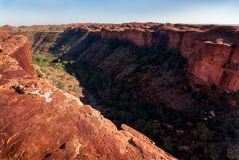 En el borde del acantilado de reyes Canyon que mira abajo en la garganta Imagen de archivo