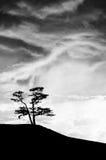 En el borde del mundo Foto de archivo libre de regalías