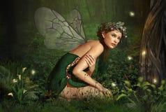 En el bosque de hadas stock de ilustración