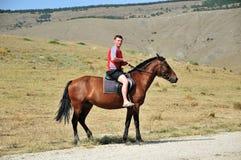 En el caballo Imágenes de archivo libres de regalías