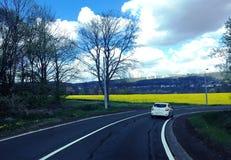 En el camino Foto de archivo