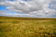En el camino a la estepa de Escocia como en Mongolia foto de archivo