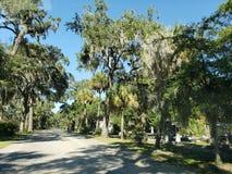 En el cementerio de Bonaventure en Savannah Georgia fotografía de archivo