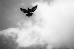 En el cielo fotografía de archivo