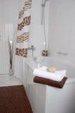 En el cuarto de baño Fotografía de archivo libre de regalías