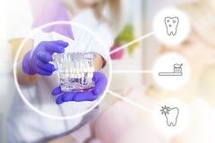 En el dentista Fotografía de archivo libre de regalías