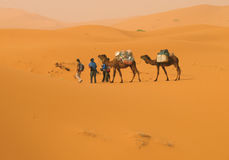 En el desierto Fotografía de archivo