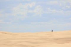En el desierto Imágenes de archivo libres de regalías