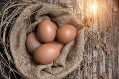 En el foco selectivo de huevos frescos en cesta del cáñamo, imagen de archivo