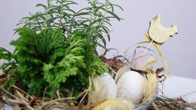 En el fondo blanco, la rotación, composición floral de Pascua en estilo rústico, consiste en los huevos, plumas, plantas verdes almacen de metraje de vídeo