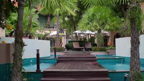 En el hotel, palmeras cerca de las piscinas metrajes