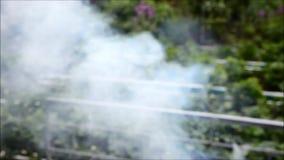 En el humo del jardín que se alza de cierre del fumador del Bbq almacen de video