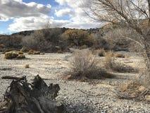 En el medio de desierto Foto de archivo libre de regalías
