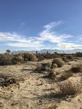 En el medio de desierto Imagenes de archivo