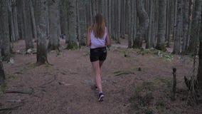 En el movimiento una mujer joven que camina en el pino negro Forest Back View 4K almacen de video